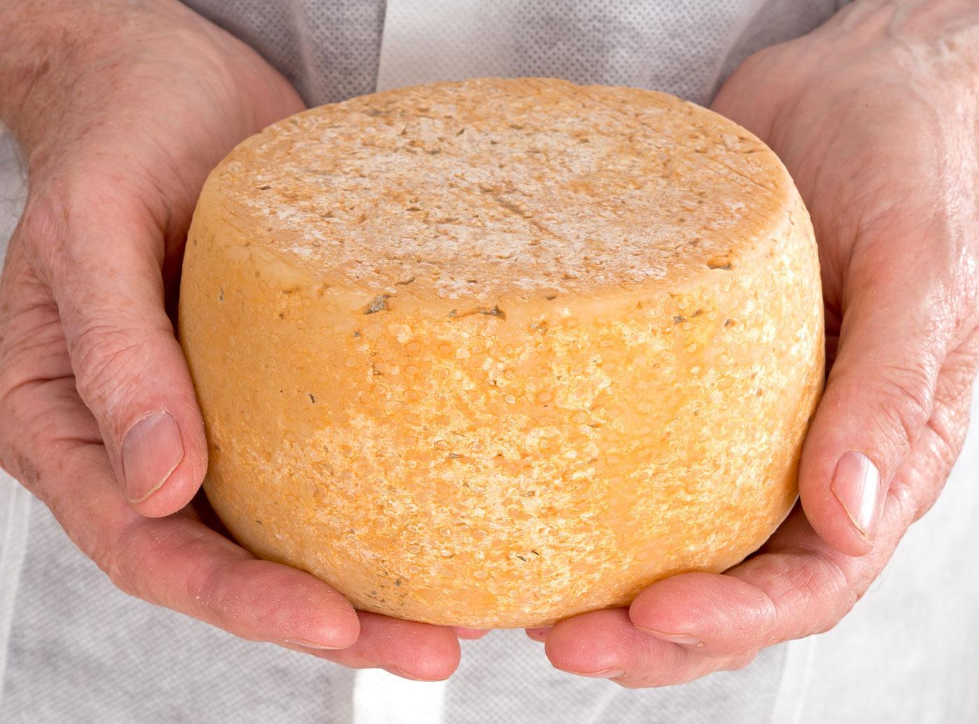 Твердый сыр и творог своими руками